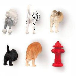 Kikkerland Gadget Dog Butt Magnets 6 Per Set Pas de couleur