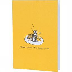 Papette Carte de Voeux El Gato Pablo Congratis On Your Little Bundle Assortiment