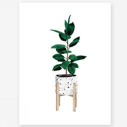 All the ways to say CADRE/PHOTO ALL FICUS Pas de couleur