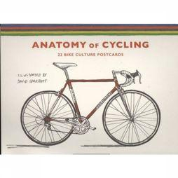 Laurence King Carte De Voeux Anatomy Of Cycling Pas de couleur