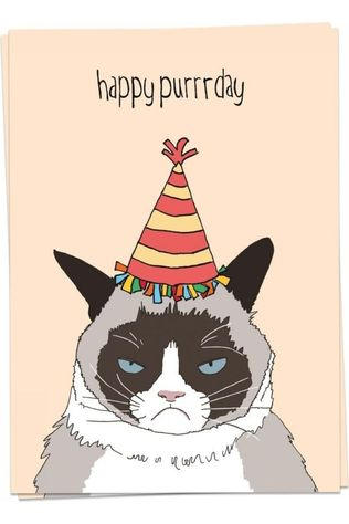 Kaart Blanche Carte De Voeux Happy Purrrday Assorti / Mixte