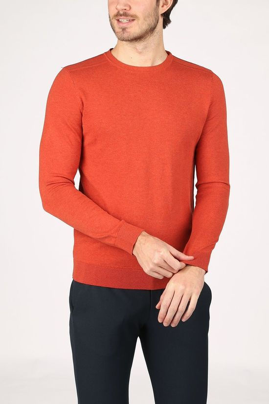 Selected Trui berg Crew Neck B Noos Roest
